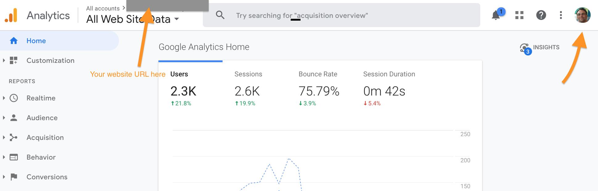 Google Analytics screen capture