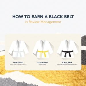 earn a black belt in online reputation management