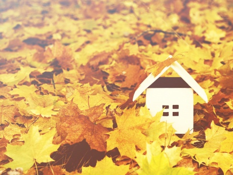 paper house nestled in orange autumn leaves
