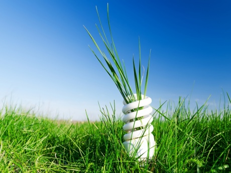 grass growing out of an energy efficient LED lightbulb in a field