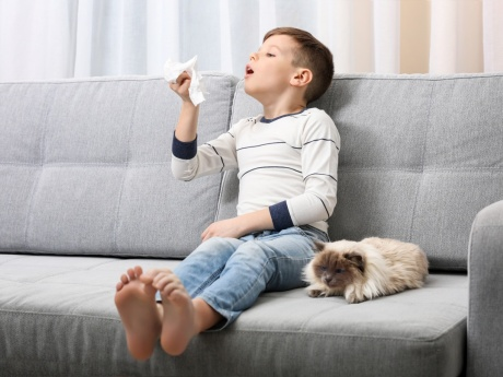 small child with dog blowing nose depicting wellness in the home